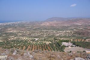 Landschap met olijfbomen tijdens wandelreis op Kreta in Griekenland