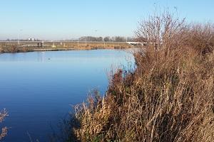 Water op wandeling over het Waterliniepad