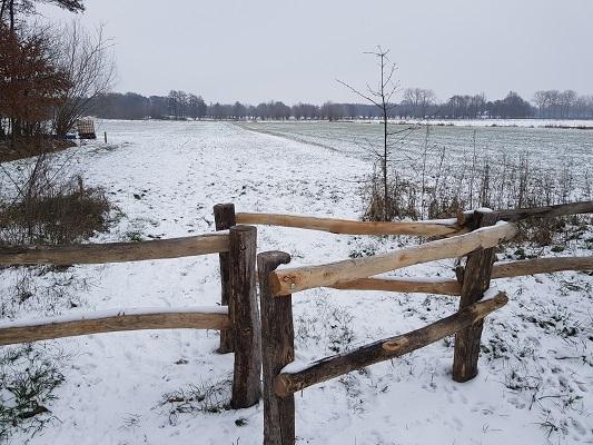 Wijstgronden tijdens IVN-wandeling Over Peelrandbreuk en wijstgronden in Uden