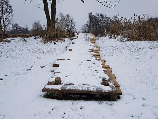 Knuppelbrug Wijstgronden tijdens IVN-wandeling Over Peelrandbreuk en wijstgronden in Uden