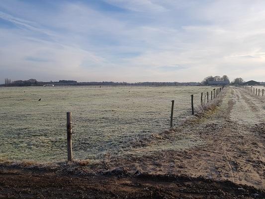 Renkumse Heide op een wandeling over Klompenpad Molenbeeksepad bij Renkum