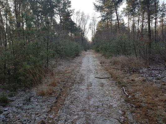 Telefoonweg Renkum op een wandeling over Klompenpad Molenbeeksepad bij Renkum