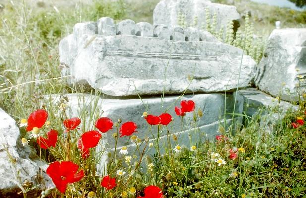 Opgraving op Mani tijdens wandelreis in Griekenland