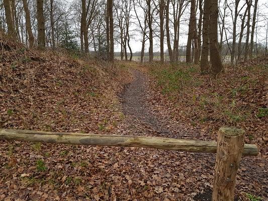 Linie den Hout tijdens een wandeling over het Zuiderwaterliniepad van Terheijden naar Oosterhout