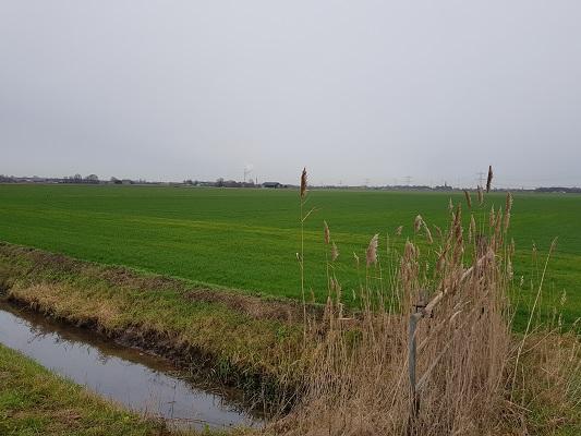 Landschap bij Linie den Hout tijdens een wandeling over het Zuiderwaterliniepad van Terheijden naar Oosterhout