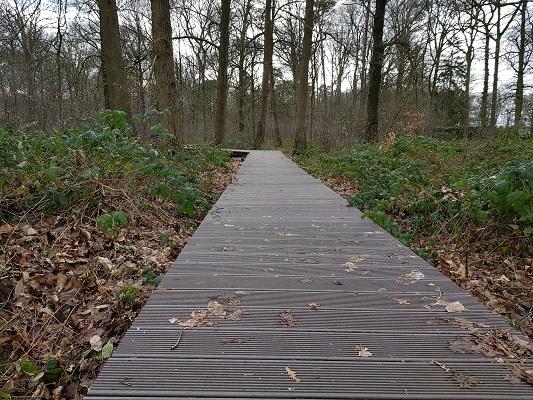 Vlonderpad bij de Herdgang tijdens een wandeling over het Philipspad van Gegarandeerd Onregelmatig in Eindhoven