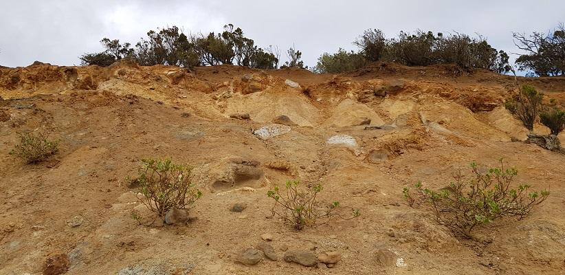 Wandeling op La Gomera naar het maanlandschap van Vallehermoso