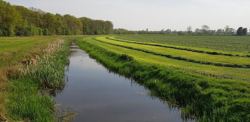 Wandelen langs het Westerborkpad