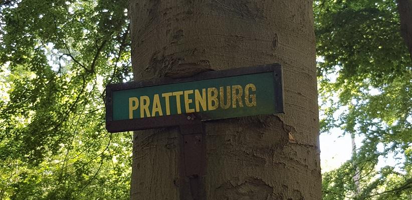 Trage tocht over de Utrechtse Heuvelrug bij Veenendaal bij landgoed Prattenburg