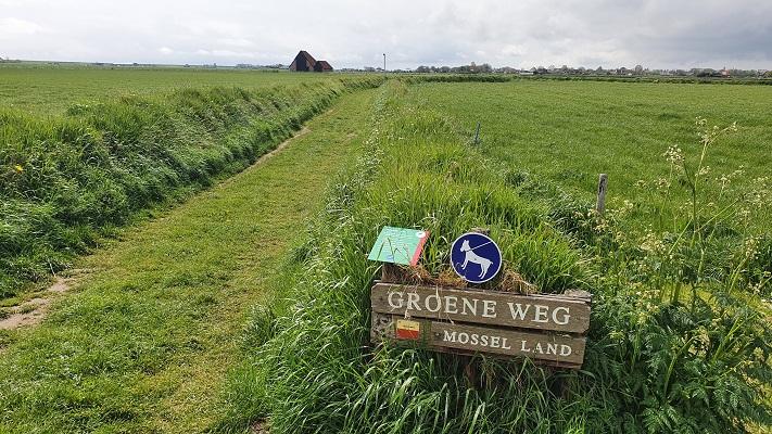 Wandeling op Texel van Cocksdorp naar Oosterend bij de Groeneweg Mosselland