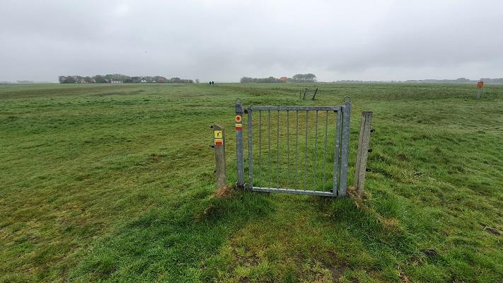 Wandeling op Texel van Cocksdorp naar Oosterend in de Eierlandse Polder