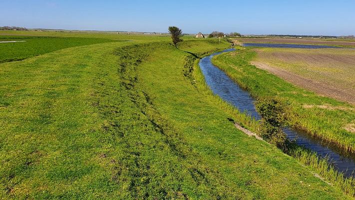 Wandeling van 't Horntje naar Oosterend op Texel op oude dijk