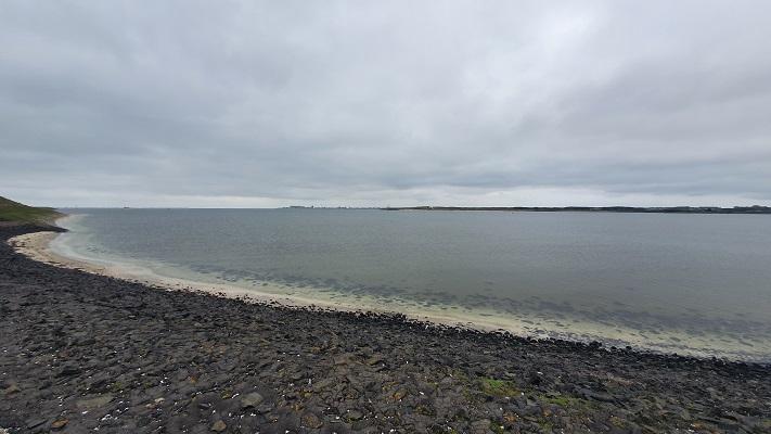 Wandeling op Texel van 't Horntje naar De Koog bij de Mokbaai