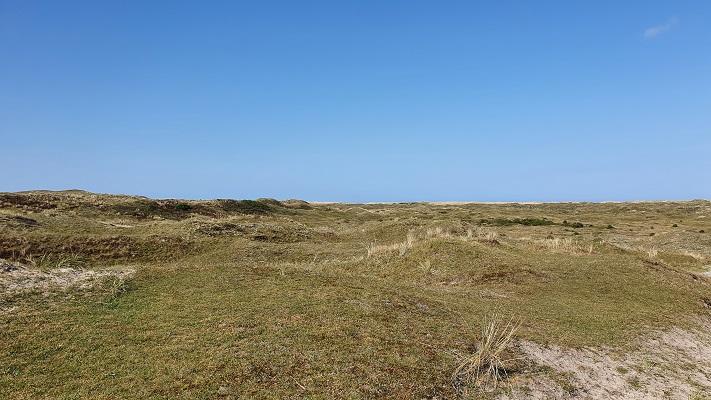 Wandeling op Texel van De Koog naar Cocksdorp bij de Eierlandse Duinen